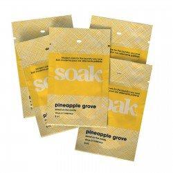 Minisoak Wash 5ml Pineapple Grove