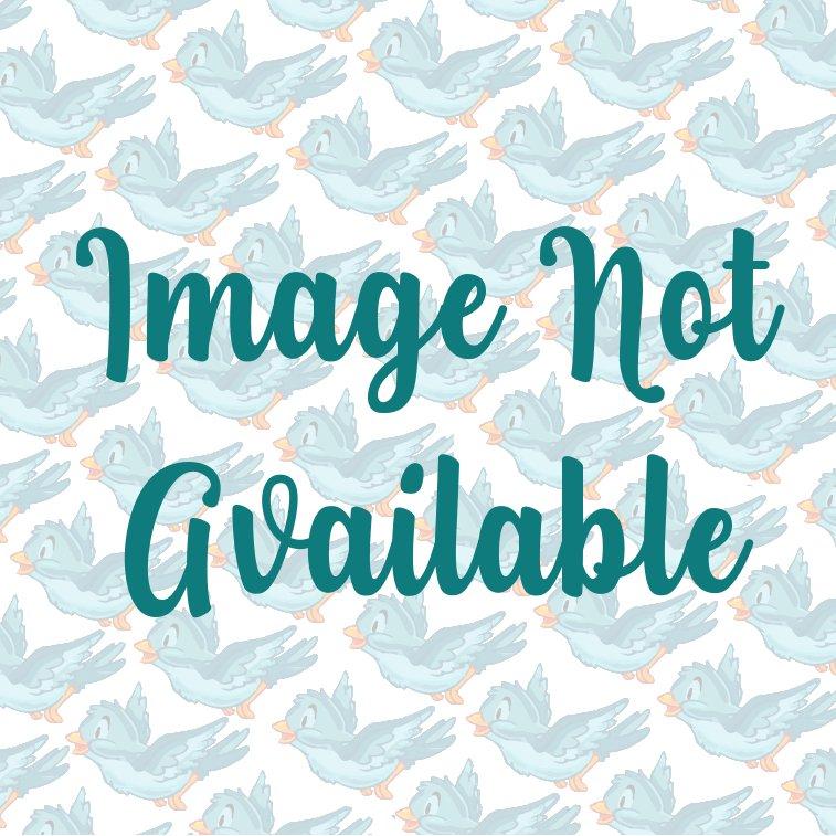 Aboriginal Prints - Kingfisher