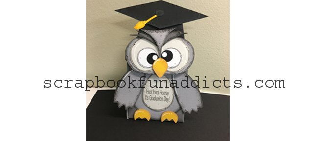 Graduation Owl Box 5 Pack