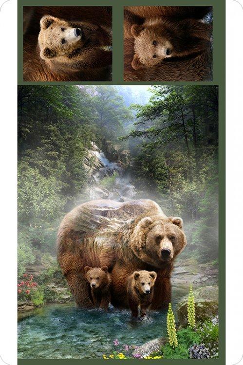 Digital Print Minky Cuddle Bear Panel by Hoffman 60