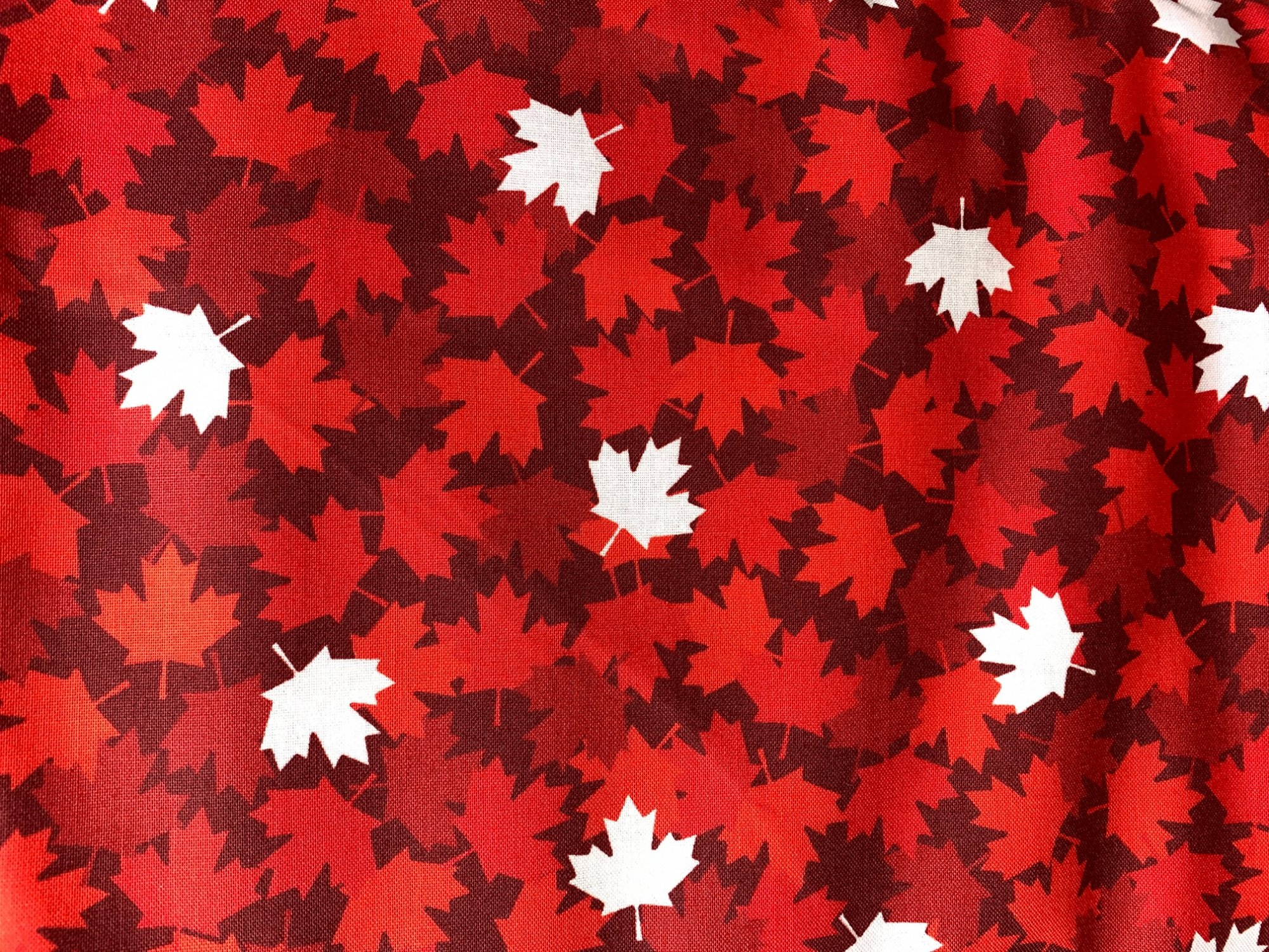 Canadian Christmas All-over Red Leaves