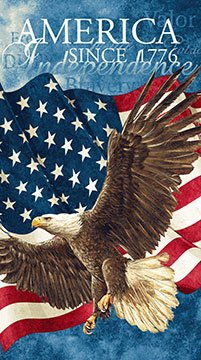 Stonehenge Stars and Stripes - (39371-49) flying eagle with waving U. S. flag panel