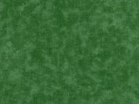Blenders- Green