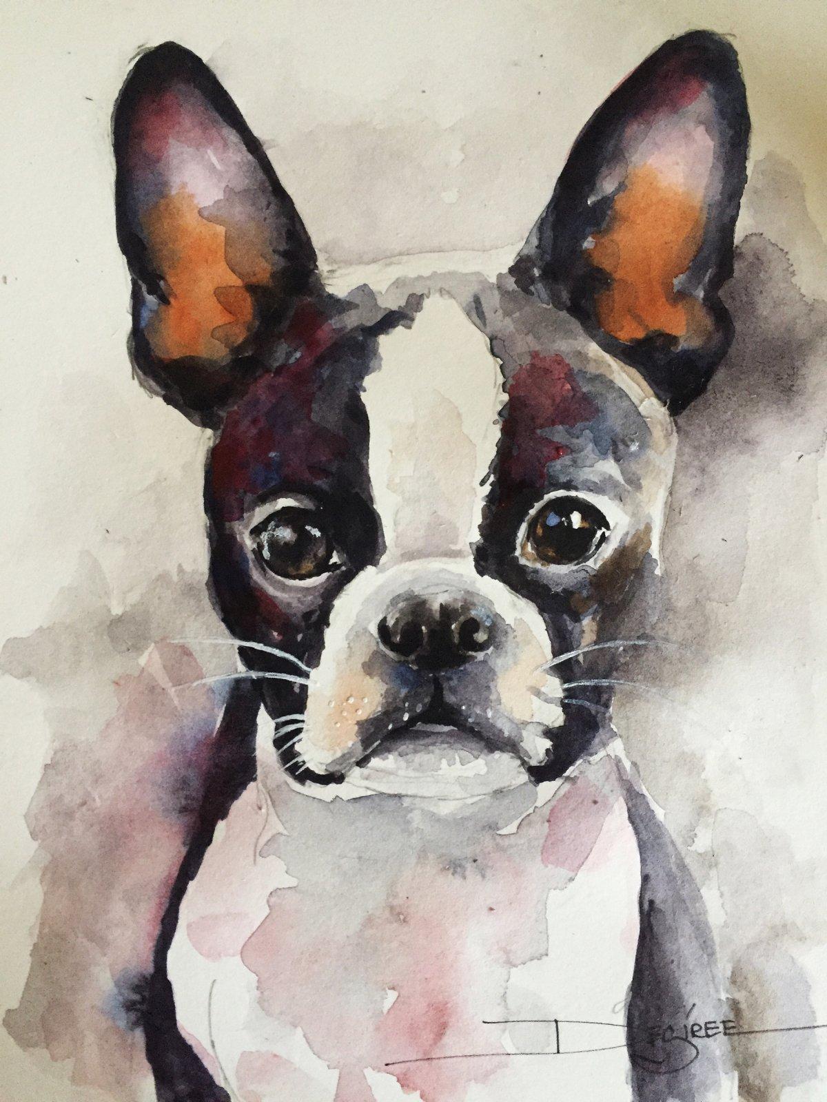 Boston Terrier Art Print 8x 10 (AW-01)