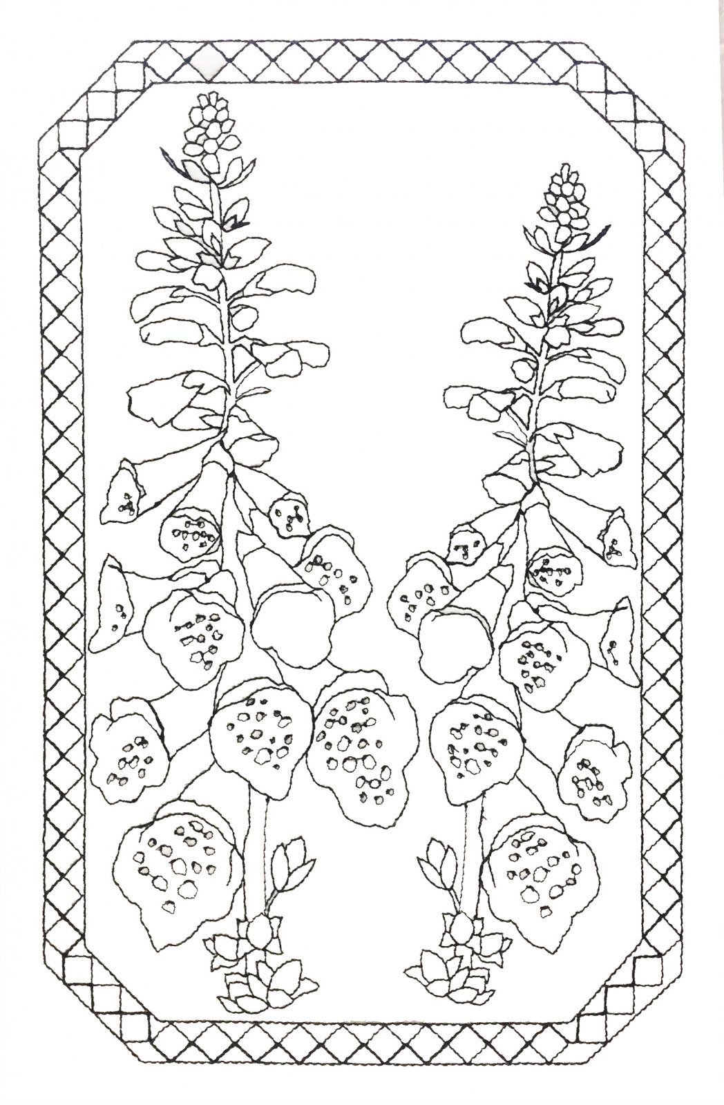 Pre-Stitched Art Applique blocks for coloring- Large Foxglove (QA-14F)