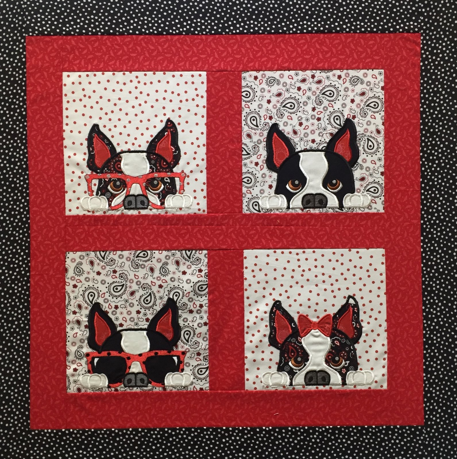 Boston Terrier Peek-a-boo designs : boston quilt - Adamdwight.com