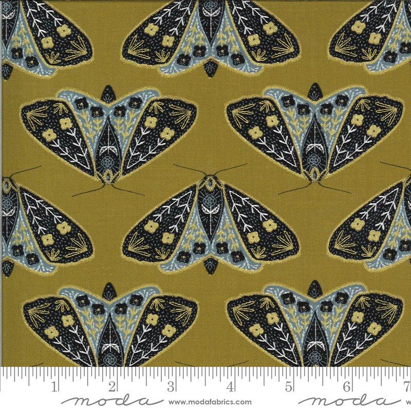 Dwell Possibility - Black, Umber, Gold Moths
