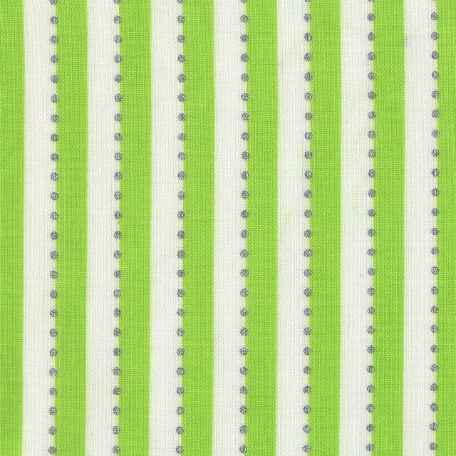 Anthology BeColourful Stripe- Green/White Metallic