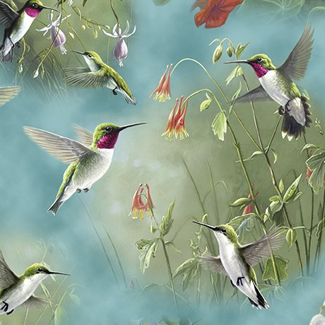 Hummingbirds Scenic
