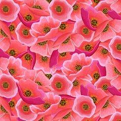 Poppies, Wild Beauty