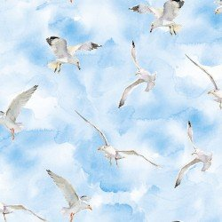 Seagulls, 3 Wishes