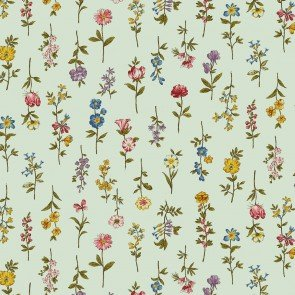 Spring Meadow, 4500-493