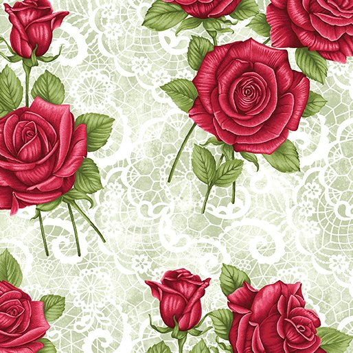 Festival of Roses, Lace Rose