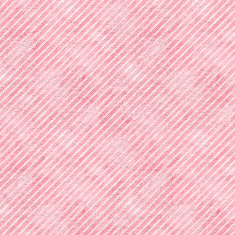 Pink Stripe, Botanical Oasis