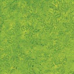 Holly, Green