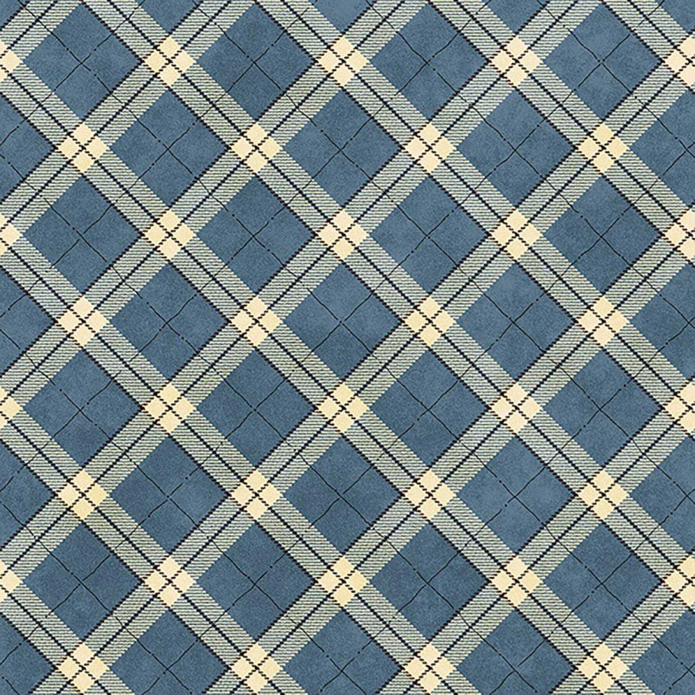 My Precious Quilt, Blue Plaid