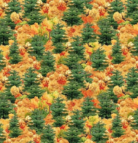 Covered Bridges, Fall Trees