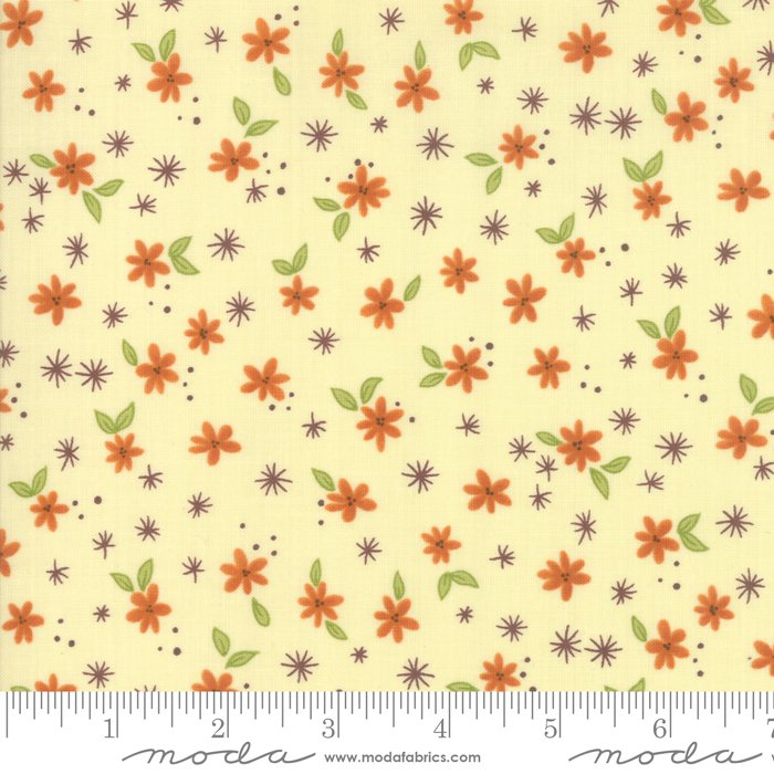 Last Bloom, Sm Natural Daisy
