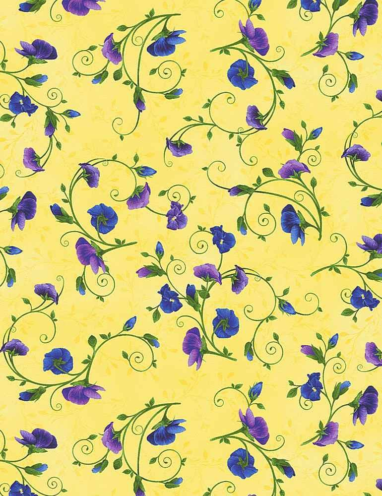 Pansy on Yellow