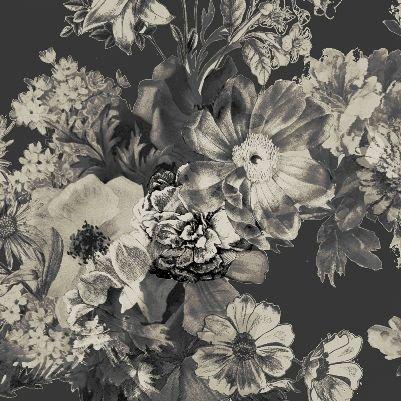 Shadow Flower, qgGF5970-11 E