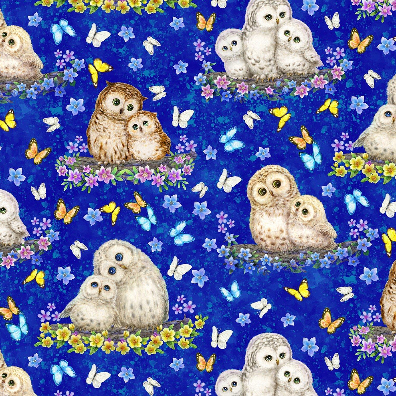 Epic Owls, Owls & Butterflies
