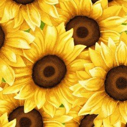 Sunny Sunflowers, Packed Sunflowers