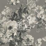 Shadow Flower, qgGF5970-11 A