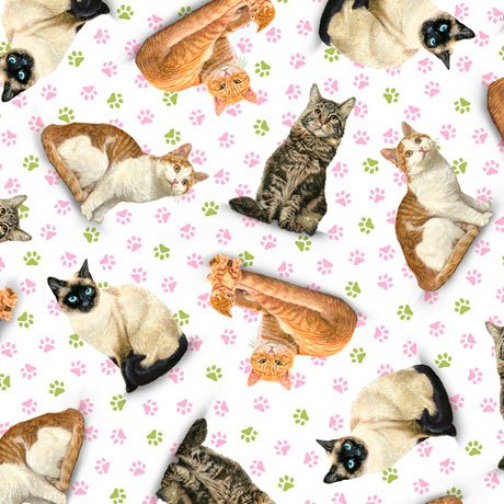 Fancy Felines, Tossed Cats