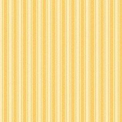 Yellow Stripe, Wild Rose