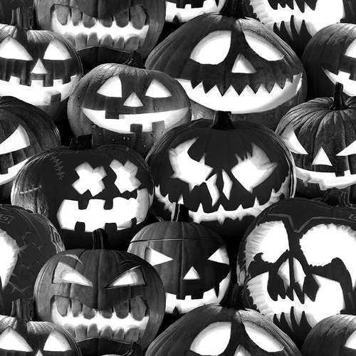 Ghoulish Gathering Black Pumpkins