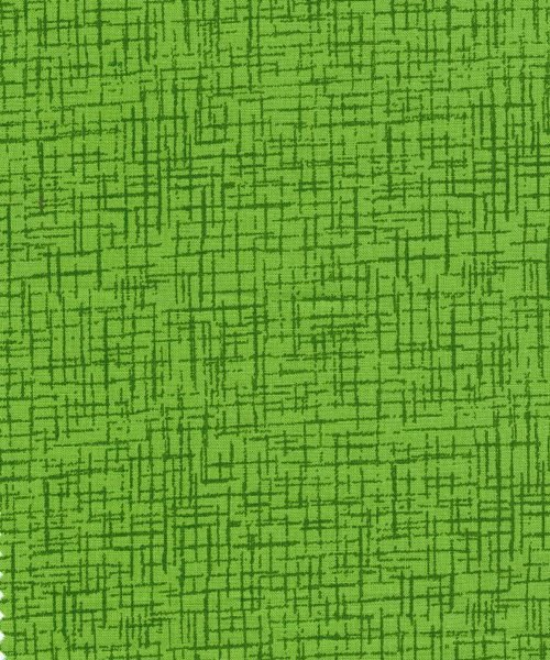 110 Wide x 3 yards RI-8064-4 Lime