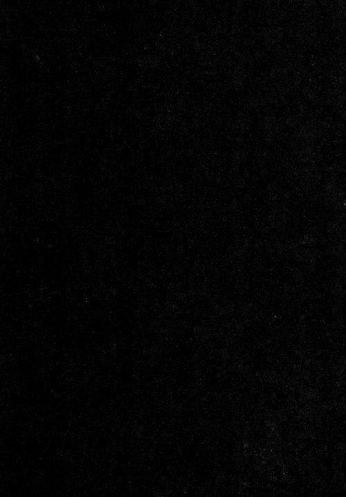 Flannel 110 Wide x 3 yards RI-9016-28 Black