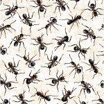 120 13821 you bug me ants