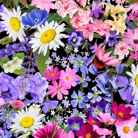 Mixed Wild Flowers 7568-Multi