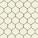 Chicken Wire 50624-4
