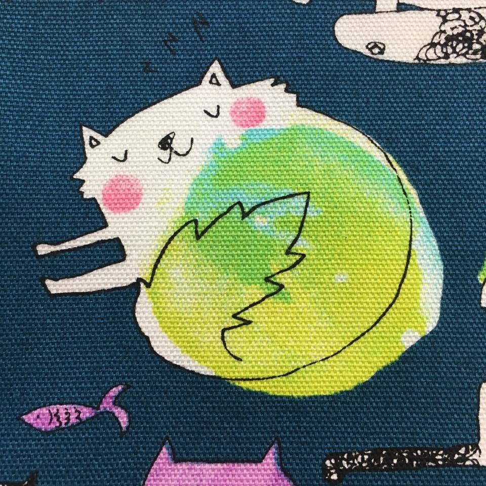 Pop Cat Canvas