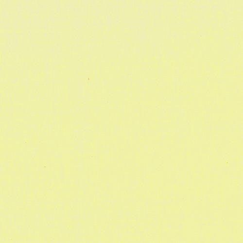 Painter's Palette Citrus Yellow*