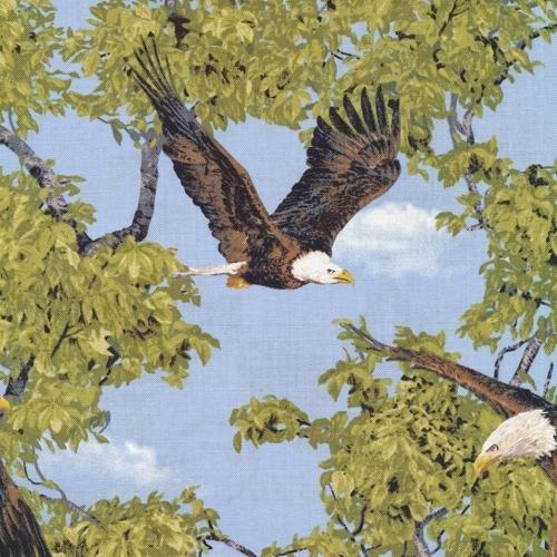Born Free - Eagle*