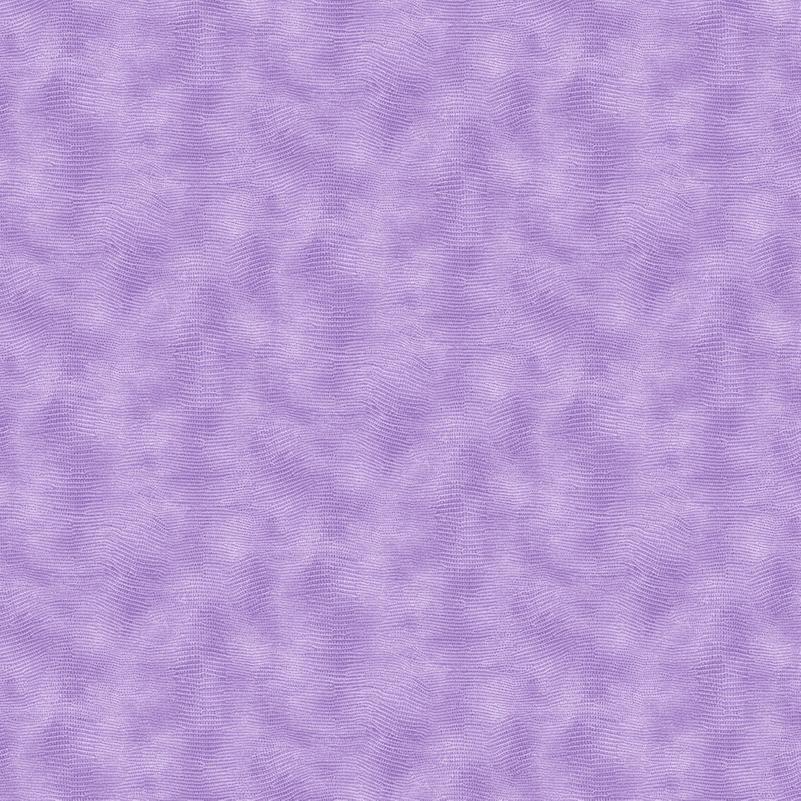 Lavender Equipoise