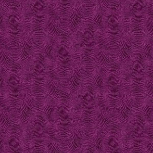 Violet Equipoise