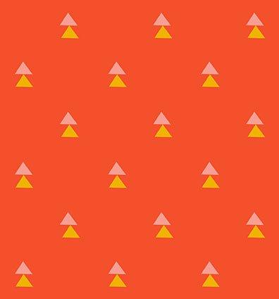 Explore Orange Wonder