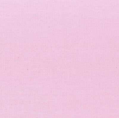 069 Carnation - Painter's Palette Solid