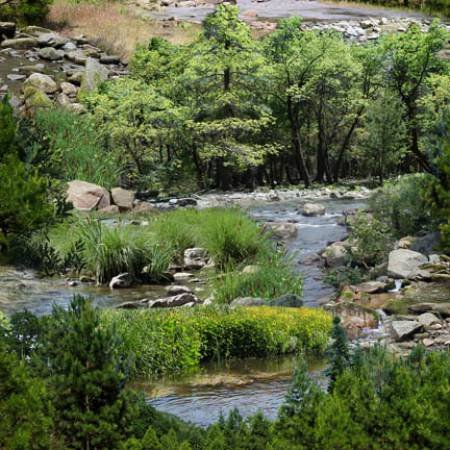 Green River Scenic*