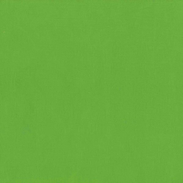 Aloe Verde