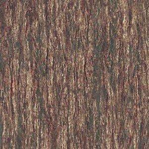 Bear Meadow - Bark