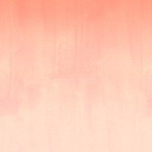 Pigment - Rosewater