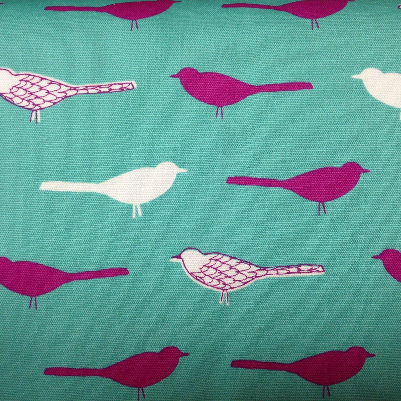 Oxford Canas - Birds - Teal