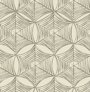 Parson Gray - Curious Nature Sateen - Spiderweb - Bone