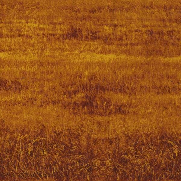 Danscapes - Grass Field - Rust Fabric