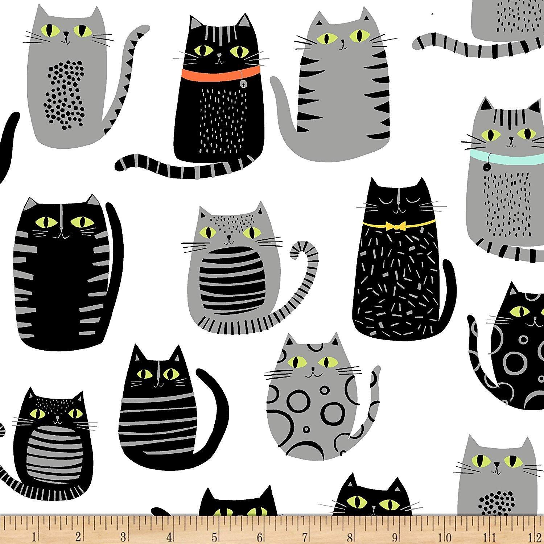 CAT FISH CATS